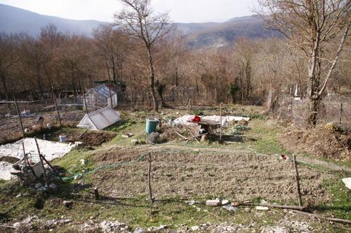 春の気配~3月の畑_f0106597_11434.jpg