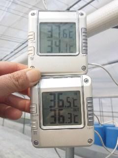 二つの温度計_d0099708_15523798.jpg