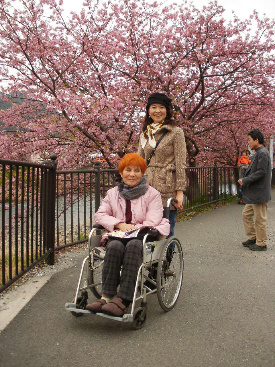 今日は母と一緒に河津桜を堪能しました♪_f0095325_1383585.jpg