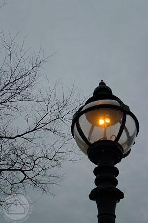 ∵夕暮れのひととき ~タニ version~_d0040733_19324316.jpg