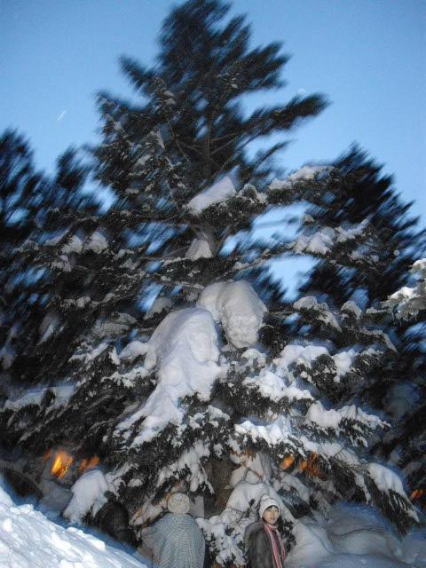 樹氷を見るはずが・・・_d0116059_2232498.jpg