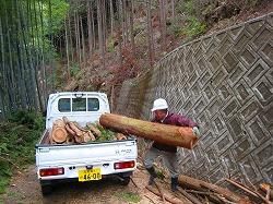 メルマガ:薪林業 (783号)_a0051128_531267.jpg