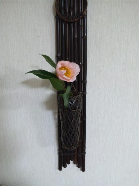 春椿_e0163046_04347.jpg
