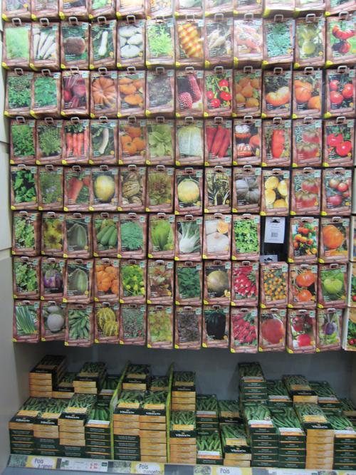 オーガニック種子〜フランスと日本〜(フランス旅⑥)_d0231263_17413526.jpg