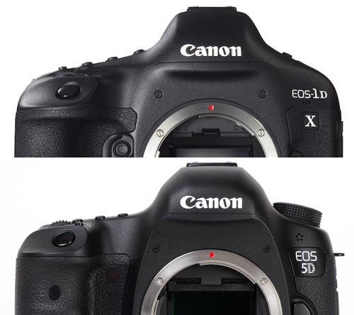 EOS-1D X と EOS 5D Mark III の違い_b0229469_091769.jpg