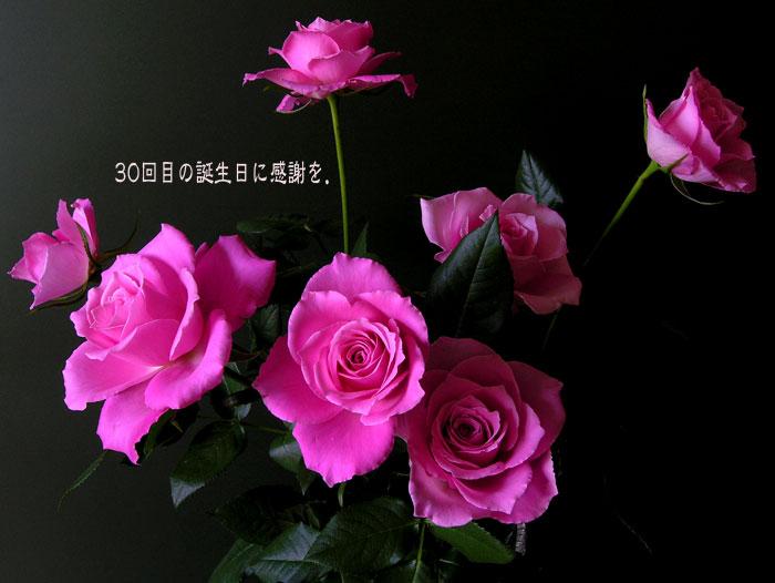 c0009981_153226.jpg