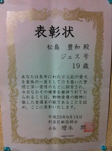 卒業証書  春_f0236990_1313299.jpg