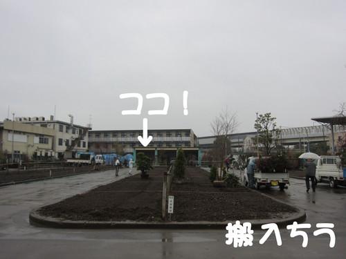 b0200291_20315580.jpg