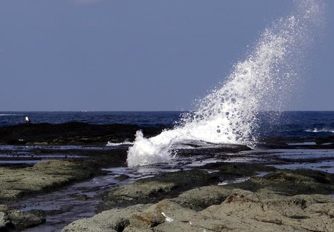 春風に誘われて 西海岸ドライブ2012_a0136293_17171121.jpg
