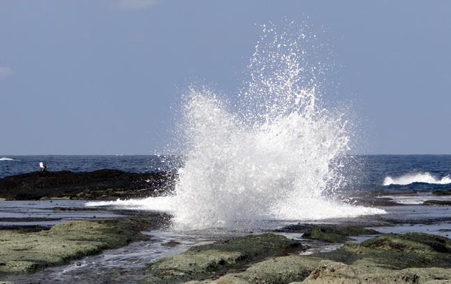 春風に誘われて 西海岸ドライブ2012_a0136293_17172664.jpg