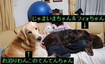 f0109202_21114571.jpg