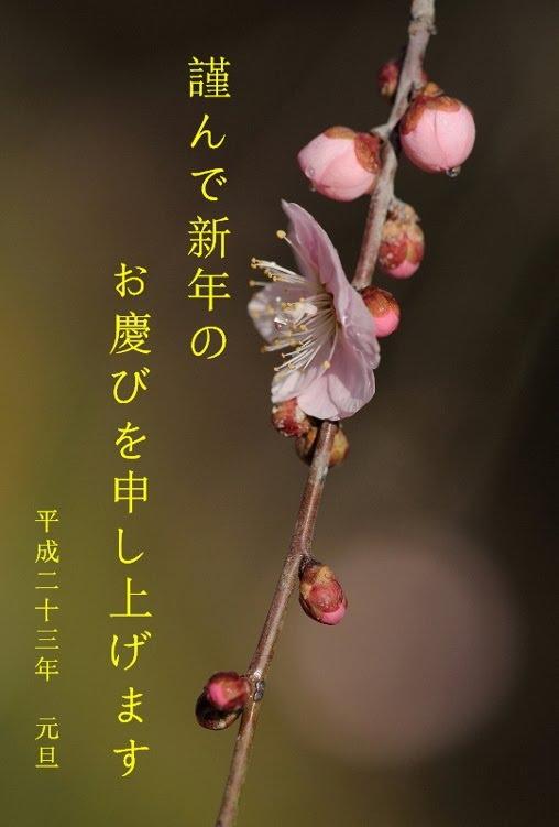 新年挨拶 _b0230131_10203621.jpg