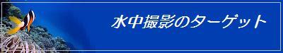 f0011352_20305097.jpg