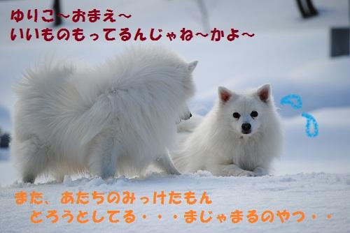c0105157_1532477.jpg