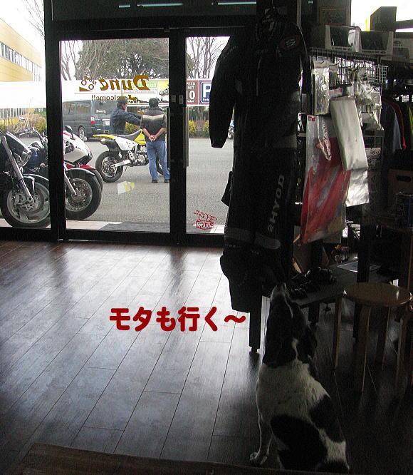 f0178858_1343646.jpg