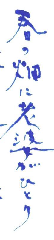 《【アーカイブス 61 】『ヤマセミの渓から ――― ある谷の記憶と追想 》_e0143870_11155929.jpg
