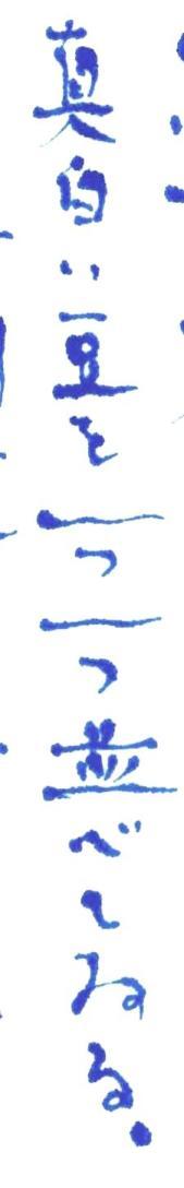 《【アーカイブス 61 】『ヤマセミの渓から ――― ある谷の記憶と追想 》_e0143870_11172252.jpg