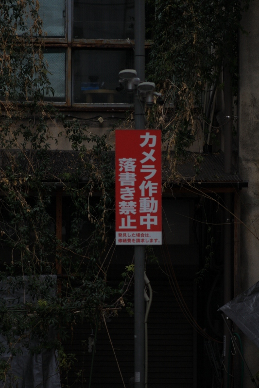 開店前の「うらぶくろ」Ⅱ_b0190540_15151768.jpg