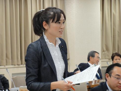 予算特別委員会(中間報告)_b0199244_320535.jpg