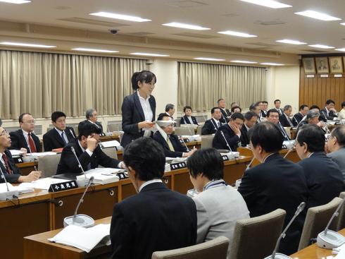 予算特別委員会(中間報告)_b0199244_3563739.jpg