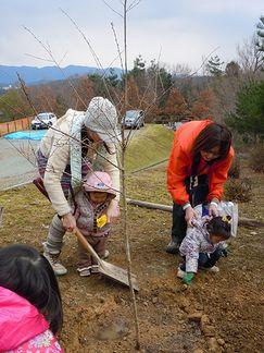 3月11日、櫻を植える_b0102572_16193961.jpg