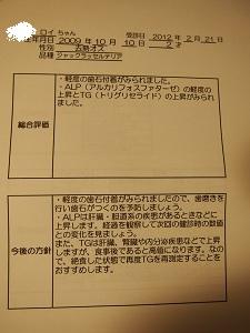 b0092580_1151893.jpg