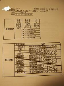 b0092580_1153534.jpg