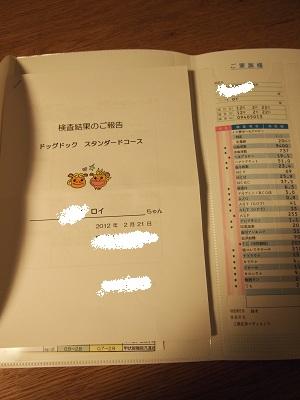 b0092580_174289.jpg