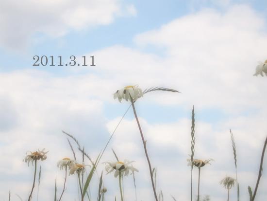 f0091194_11413352.jpg