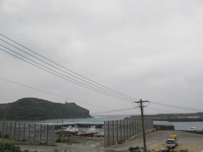 3月 12日 暖かい場所☆_b0158746_16424772.jpg