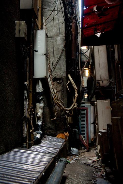 「東京の片隅で」 池口正和写真展_c0165046_1039270.jpg