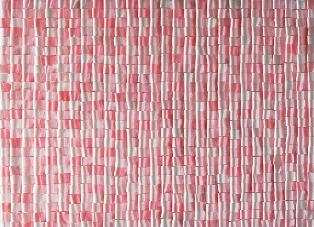 2012/4/11-16 「のような」 小松ゆう展 【平面立体】_e0091712_15472227.jpg