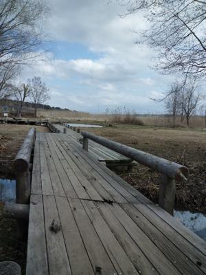 2012年3月11日は春を探しに_c0004024_1022995.jpg