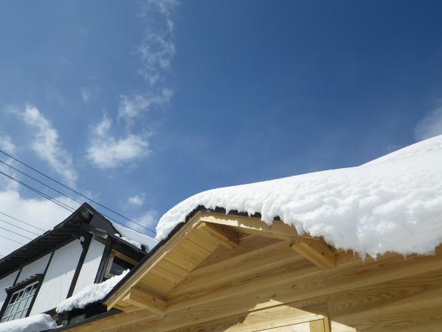 続*大雪*_b0207642_14472480.jpg