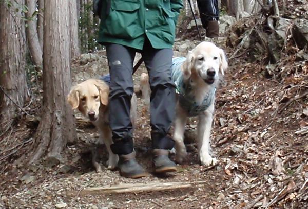 ハイキング!_c0110361_17222010.jpg