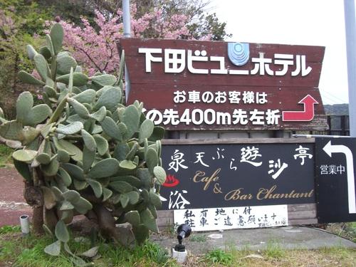 イーストフィールド社員旅行in下田_e0206865_20525275.jpg