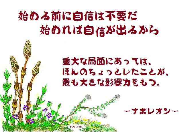 d0083472_21172029.jpg