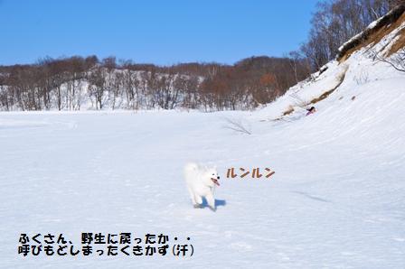 f0212597_1093333.jpg
