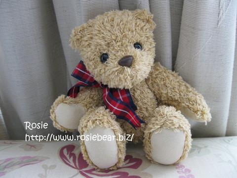 b0032098_11504748.jpg