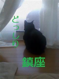 b0200310_22737100.jpg