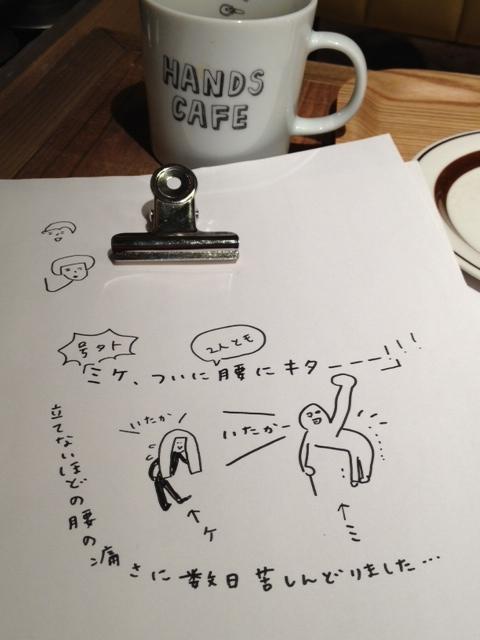 近況報告 (ミケ新聞!?)_b0126653_17274749.jpg