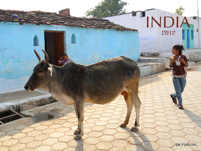 インド旅行記 18  オルチャ その2_a0092659_1926588.jpg