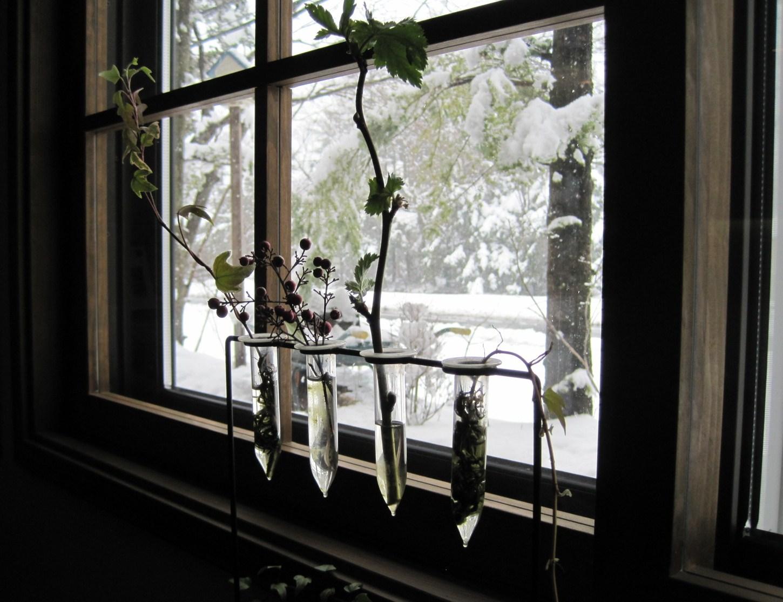 ホワイトデーに苺のマカロンを♪ @Cafe Le Petit Nid 3_f0236260_19272984.jpg