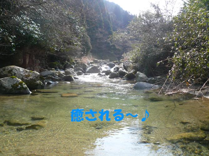 f0183484_2224989.jpg
