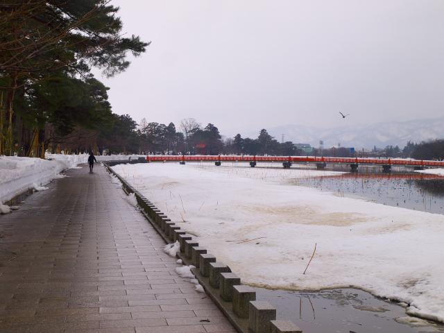 故郷の風景 春を待つ高田公園_f0024992_10513557.jpg