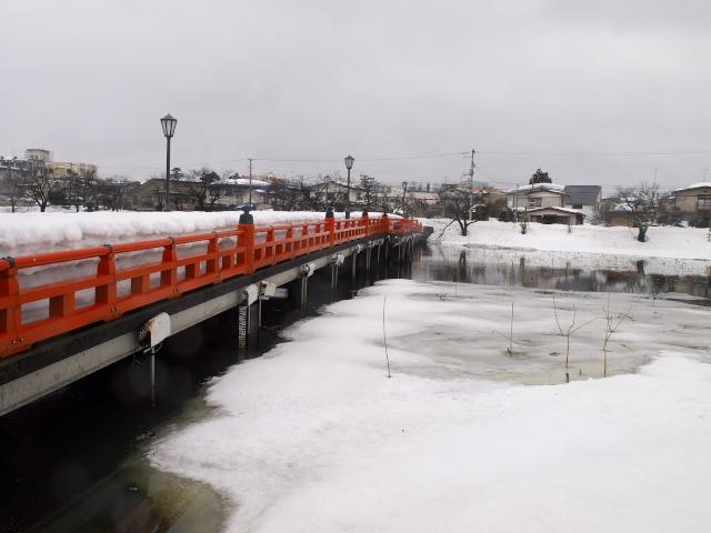 故郷の風景 春を待つ高田公園_f0024992_1052688.jpg