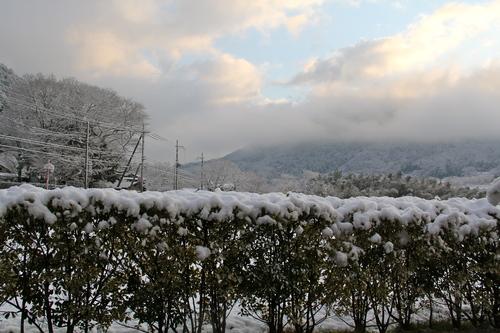 寒い日に外仕事_c0100195_14171170.jpg