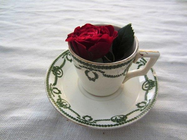 カルトゥーハ緑柄コーヒーカップ&ソーサー3 半額_f0112550_4374335.jpg