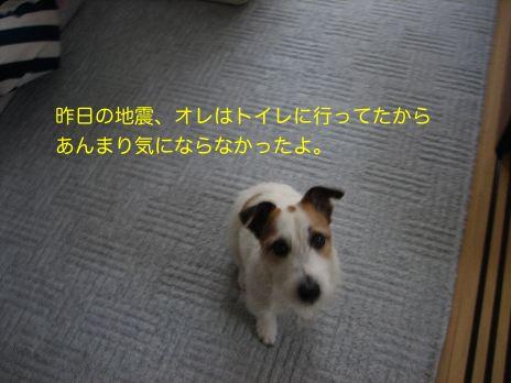 c0179472_1020028.jpg