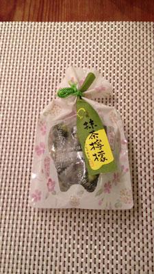 京都展でのお買い物_e0134878_12574995.jpg